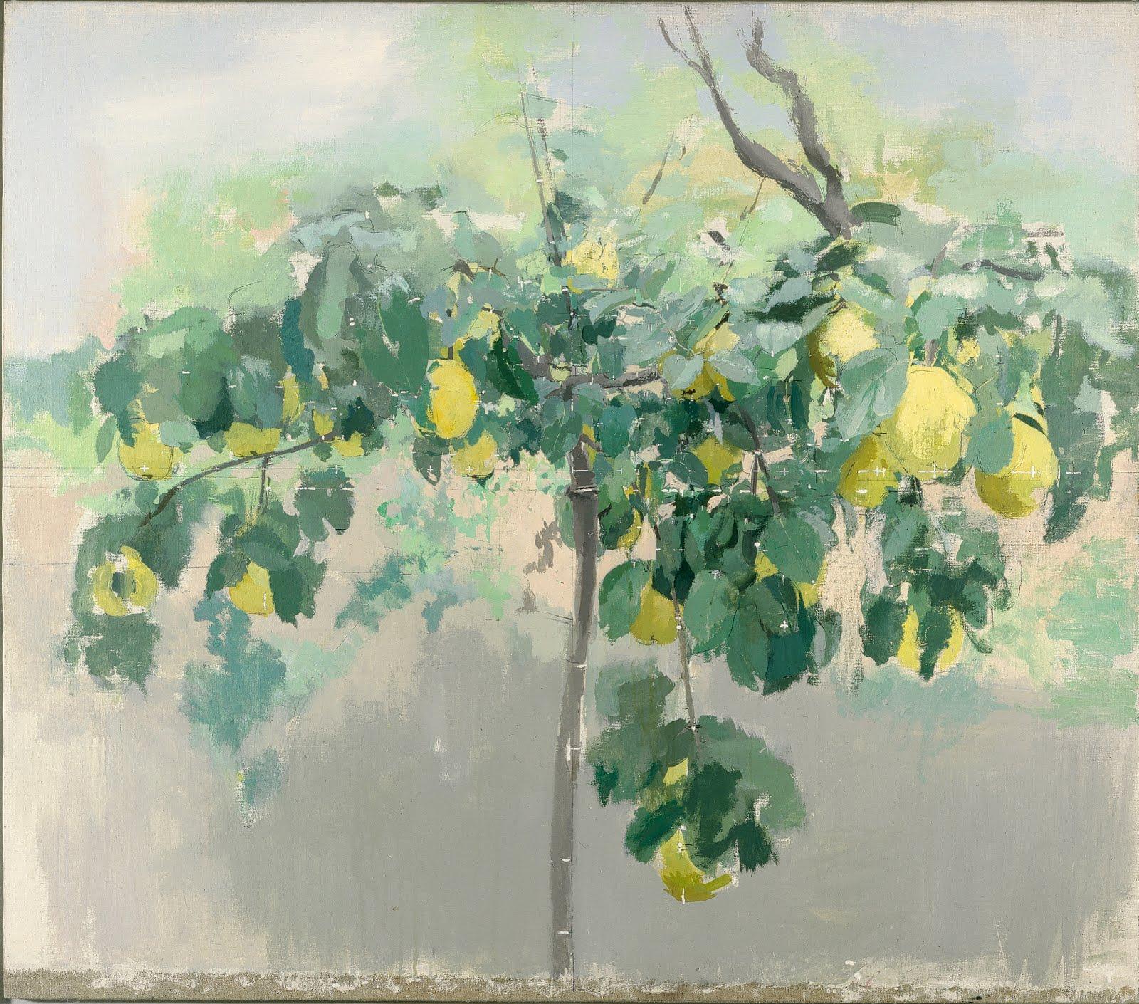 Mi kaos blanca 144 hay pintura y pintura - Arbol de membrillo ...