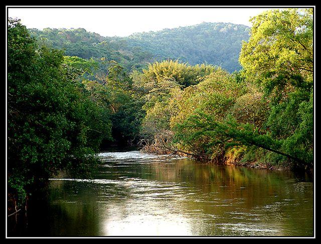 Navegando pelo rio da vida...