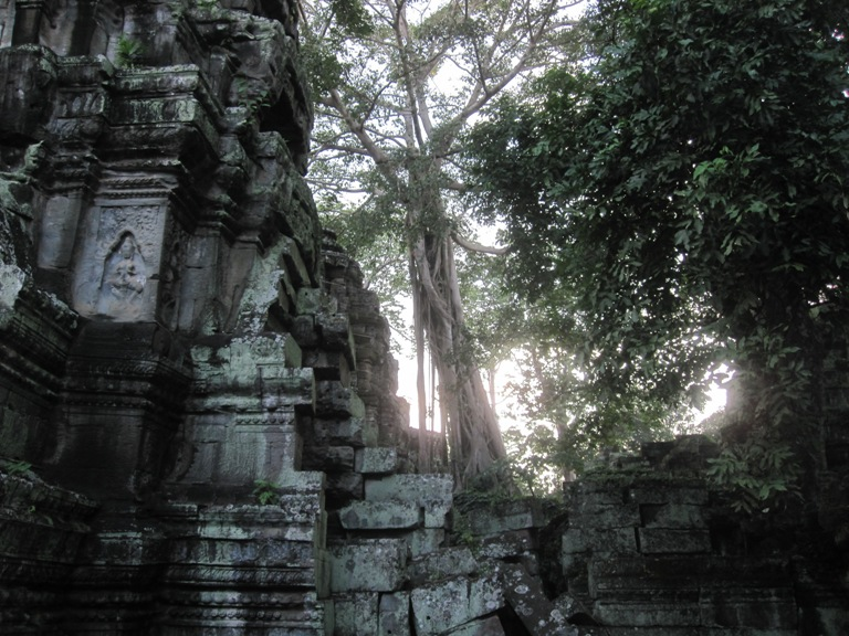 tomb-raider-temple-cambodia