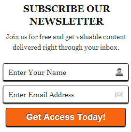 WordPress Style Premium Email Subscription Widget