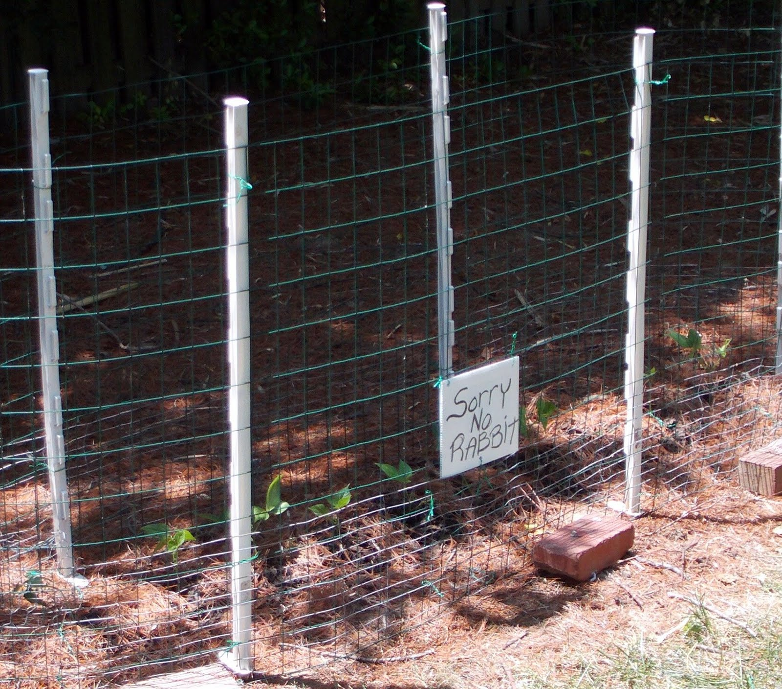 rabbit proof fence camera angles Installation guide - rabbit wire fencing minimum 150mm turned at base at right angles and turfed and buried you should now have a suitable rabbit proof fence.