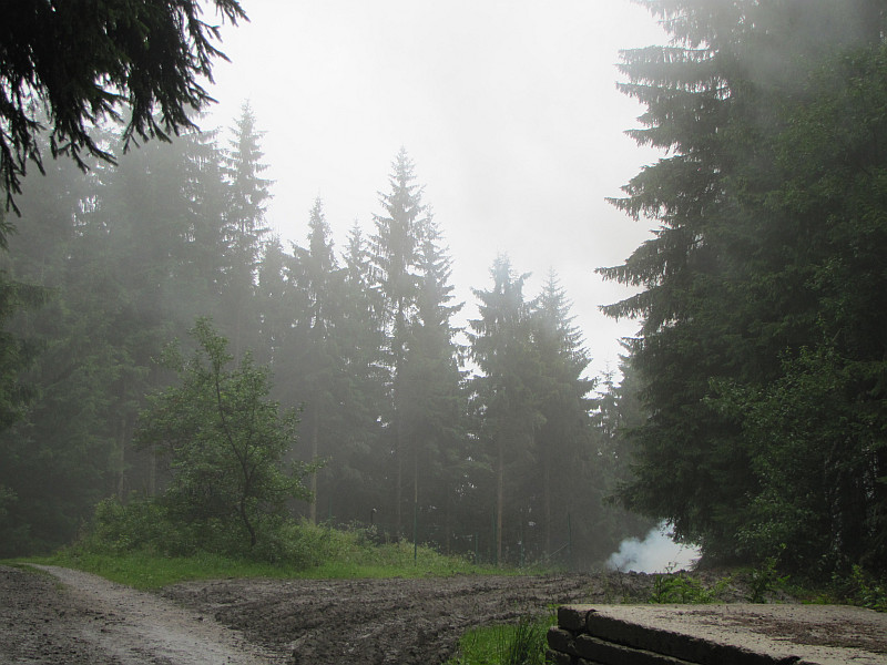 Droga pomiędzy Chatą Kmínek i Bitalovcami.