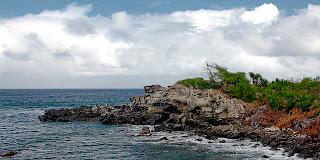 lahaina rocks