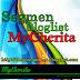 Segment Bloglist MyCherita #1 2014