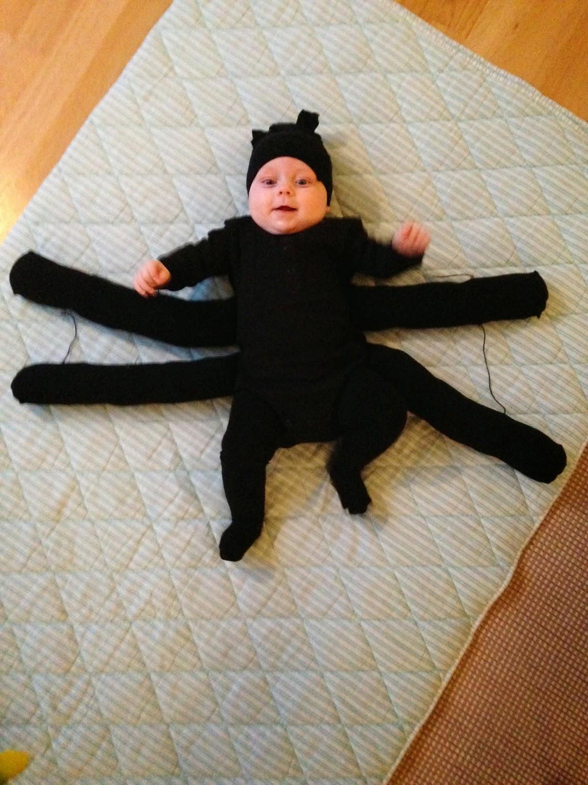 halloween kostumer edderkop