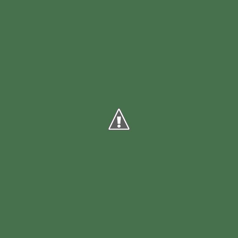 โจรปล้นสวาท คุณแม่มือใหม่ - หน้า 16