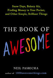 The Book Of Awesome written by Neil Pasricha