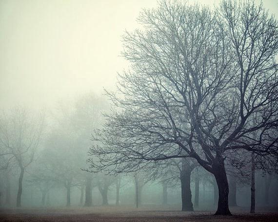 https://www.etsy.com/listing/124406923/trees-in-spring-fog-landscape?ref=favs_view_2