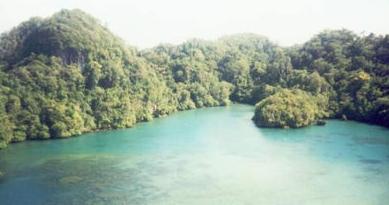 Pesona Pantai Raja Ampatnya Jawa Timur