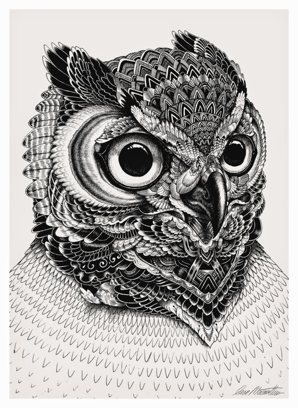 19-Iain-Macarthur-Precision-in-Surreal-Wildlife-Animals-Drawings-www-designstack-co