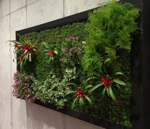 Sin salir de tu casa jardines verticales y huertos urbanos - Cuadro jardin vertical ...