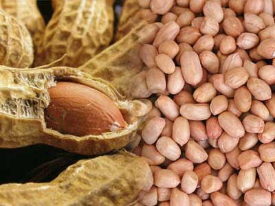 Resep Kue Kering Kacang Tanah Spesial Coklat Renyah Lembut