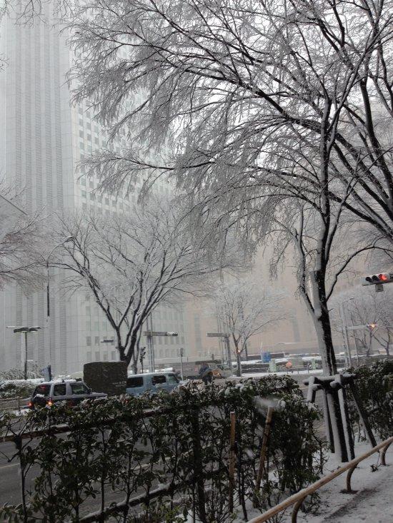 Snowy Shinjuku