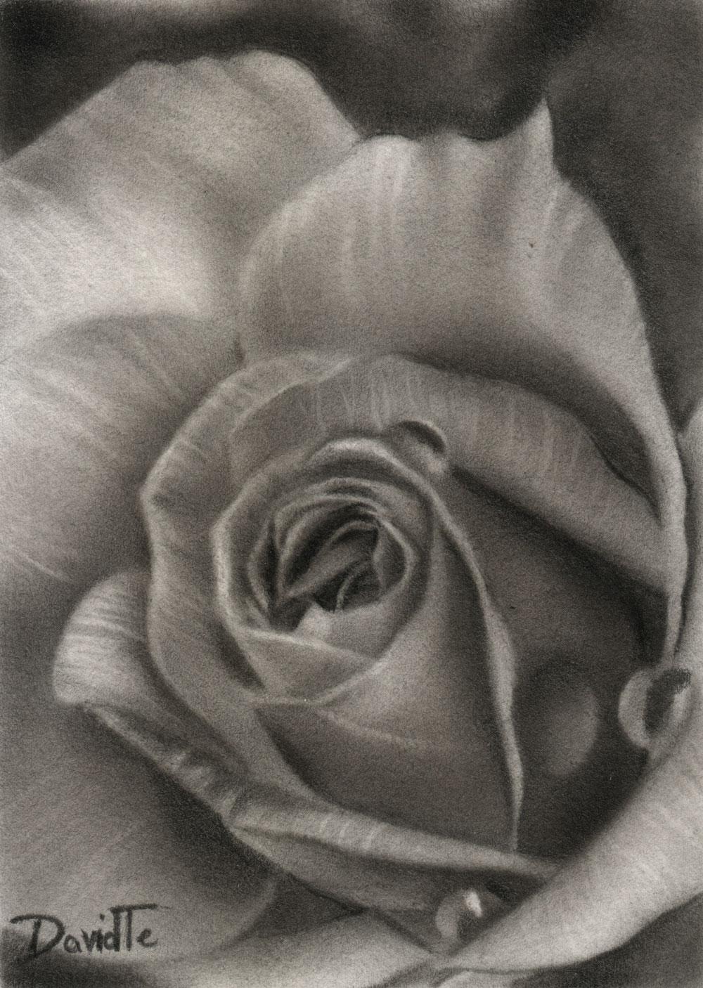 Pencil Drawings by David Te: December 2011