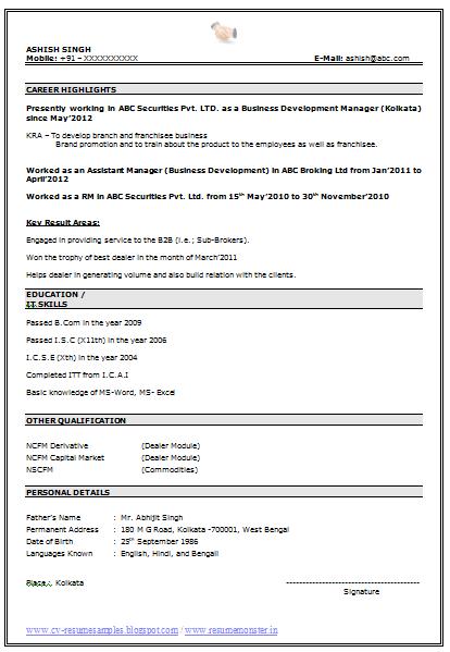best resume cv template .
