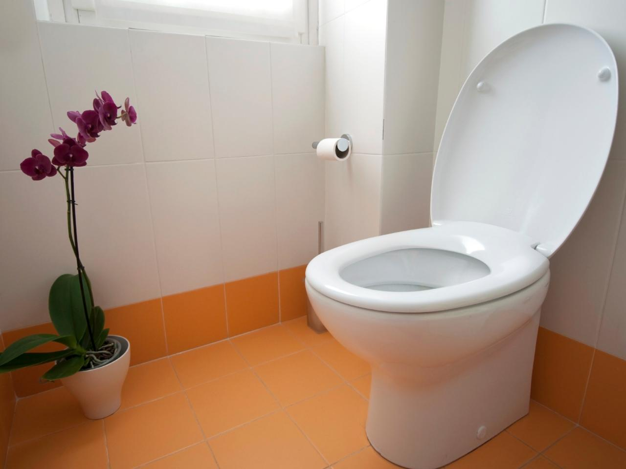 Lagos state government seals off houses lacking standard toilets ...