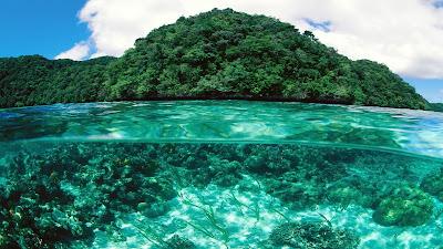 Stunning Half Underwater View Reefs and Island HD Desktop Wallpaper