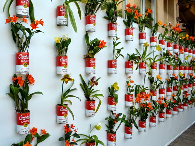 Orchid Daze: Pop! - Atlanta Botanical Garden