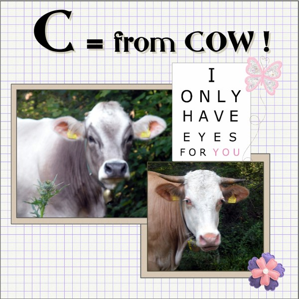March 2016 - C = for COW