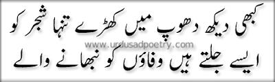 Kabhi dekh dhoop me khary tanha shajar ko - 2 line urdu poetry