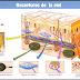 Organos Sensoriales Sistema Nervioso