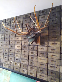 Stag Head Recycled Hunting Trophy