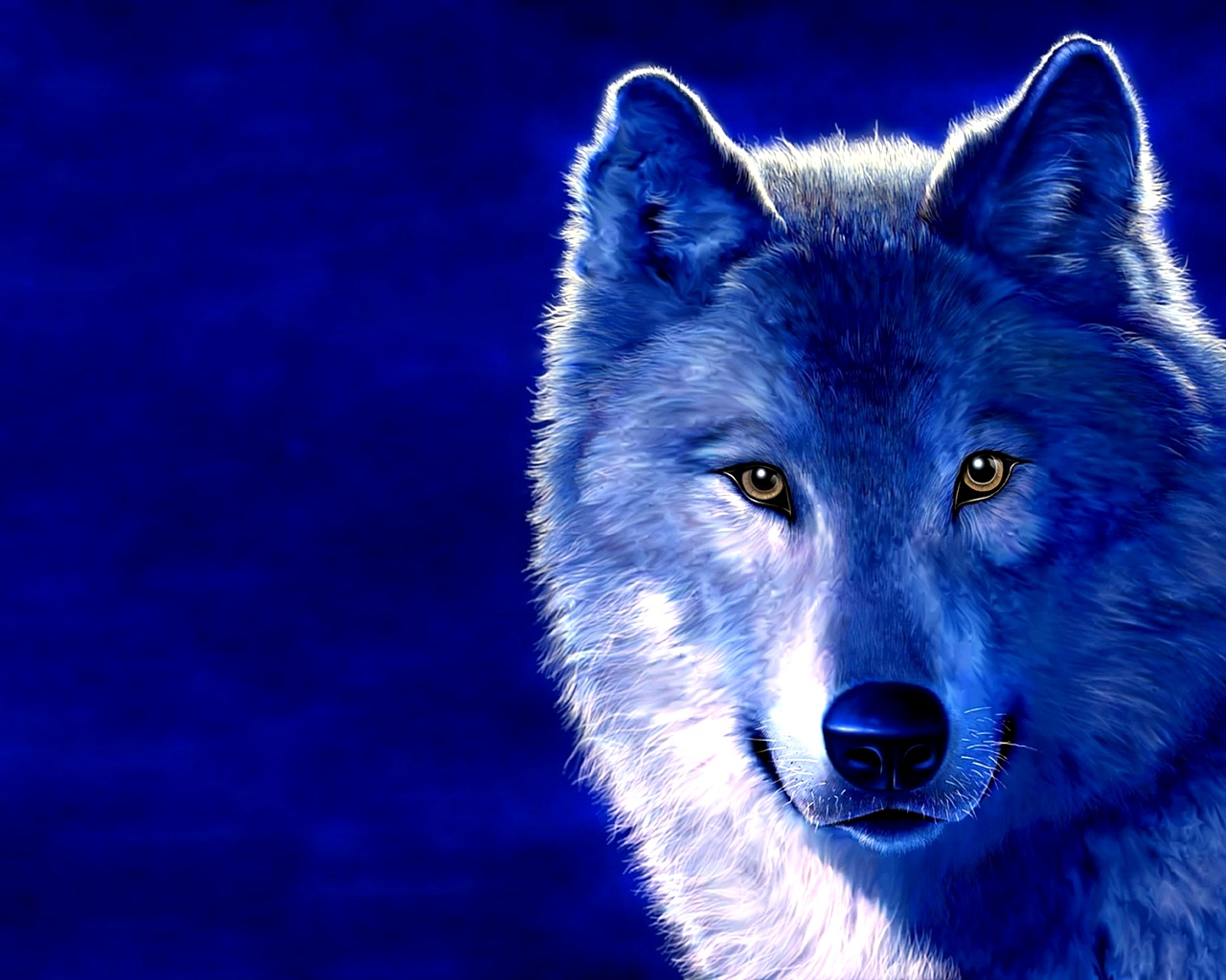 3d wolf hd desktop best quality wallpapers top quality