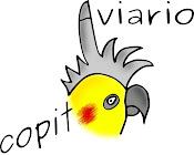Aviario Copito