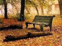 Silencio:Lugar de reflexión