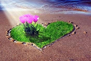 Jolies lettre d'amour sur la plage