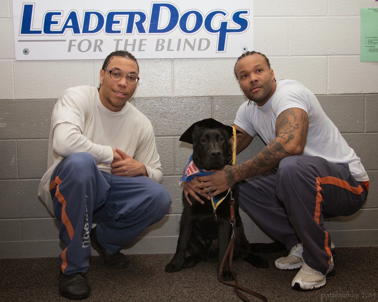 Two african american men are squatting with a black lab who is sitting between them. The men are wearing white t-shirts and blue pants and orange stripes. The man on the left has glasses. The lab has a black graduation cap on his head and is wearting a blue bandana. The man on the right has his hands around the dog. Behind them on the wall is a white poster with Leader Dogs for the Blind on it.