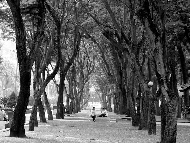 Saigon Park, Saigon Vietnam