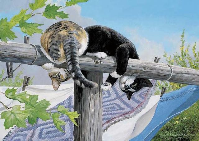 две кошки сидят на брёвнышкеи играют хвостами