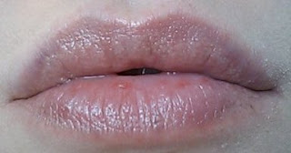 Lip Swatch! - Wet n Wild Silk Finish Lipstick - Hot Paris Pink - 520E