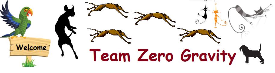 Team Zero Gravity