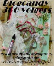 Blogcandy bij de Nederlandse Swappers