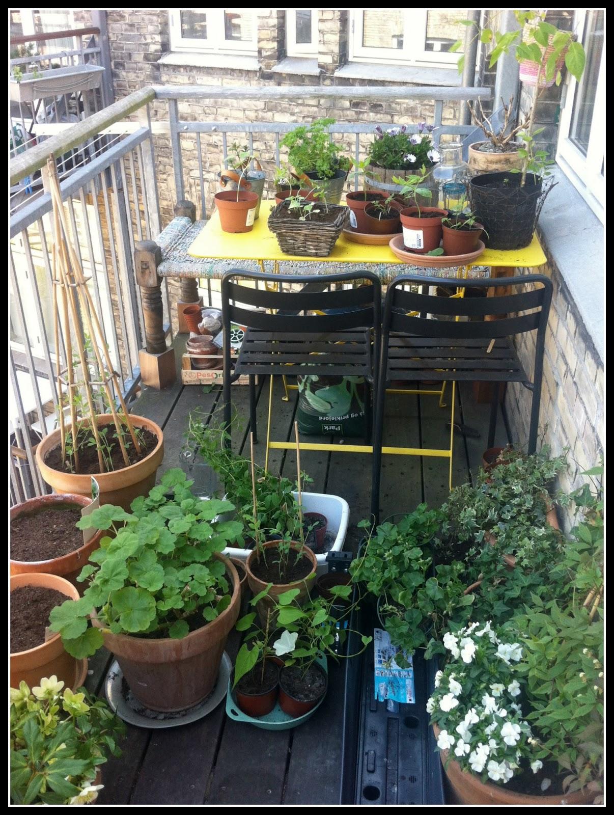 Ninas altanhave   en krukkehave midt i byen