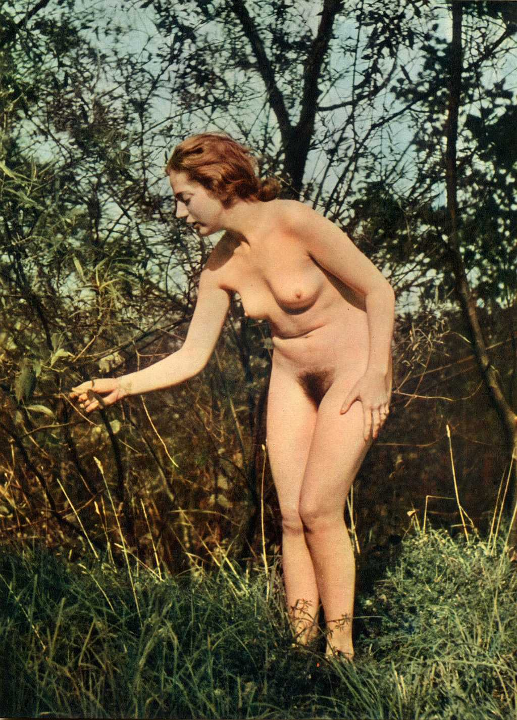 Эротическое фото времен третьего рейха 20 фотография