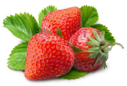 fruit strawberries 4 - photo #15