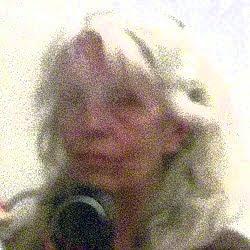 Cliquer sur l'image pour le sommaire des blogs Hélène Larrivé