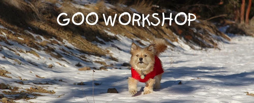 GOO Workshop