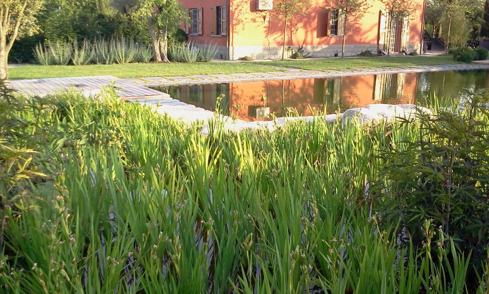 il giardino delle naiadi: il giardino feng shui - Piccolo Giardino Feng Shui
