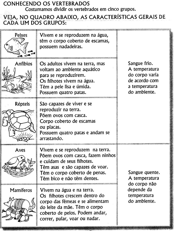 Favoritos PROJETO MEIO AMBIENTE PARA EDUCAÇÃO INFANTIL E SÉRIES INICIAIS  EZ85