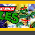 Teenage Mutant Ninja Turtles: Anual 2012
