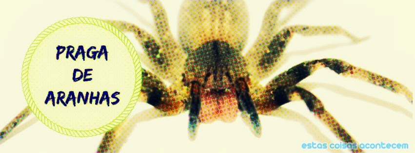 invasão de aranhas