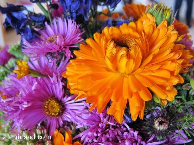 календула, Calendula officinalis, ноготки,  осенний букет, букет с тыквой, в тыкве, своими руками, мастер-класс