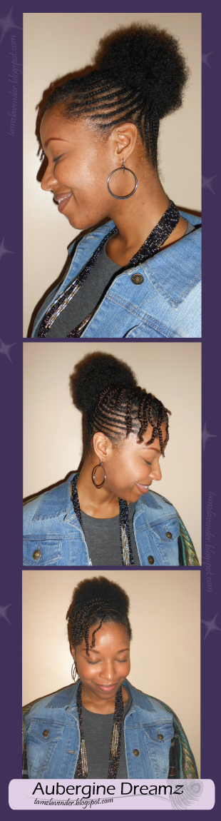 Afro Puff, Flat Braids, Two-Strand Twists