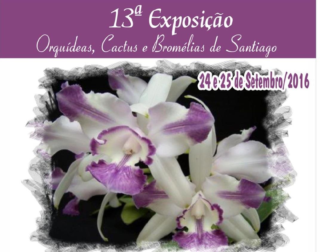 PATROCINADORES DA 13ª EXPOSIÇÃO DE ORQUÍDEAS DE SANTIAGO