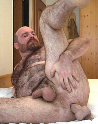 Mature Hairy Gay Bears
