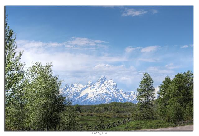 Teton Grandeur
